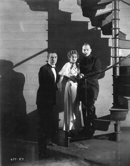 Bela Lugosi, Jacqueline Wells, and Harry Cording in Edgar G Ulmer's The Black Cat (1934)