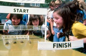 David Bracknell's The Chiffy Kids (The Great Snail Race) (1976-1980)