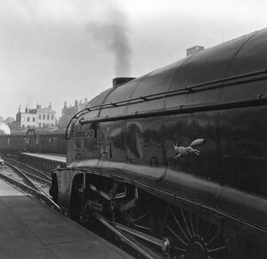 Tony Thompson's Elizabethan Express (1954)